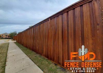 Beautiful Stained Board on Board Cedar Fence