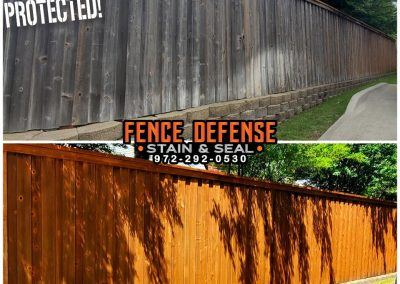 Fence Staining Before and After Pics