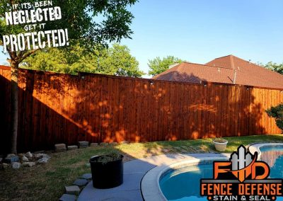 Fence Staining Company in Dallas, TX