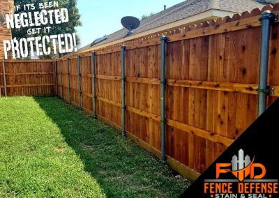 Fence Staining Experts in Carrollton