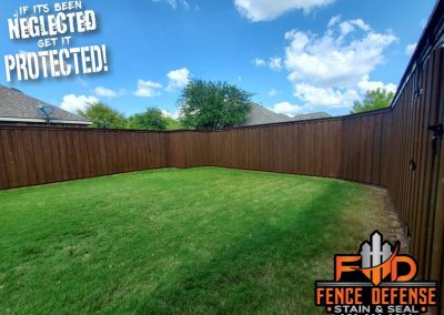 Large Backyard Fence Restained and Sealed