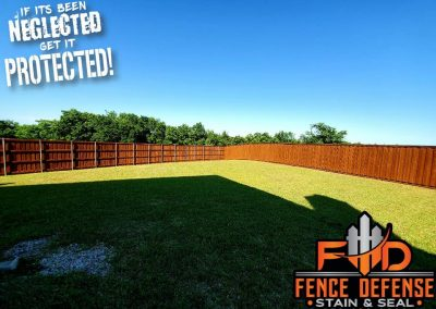 Large Fence Staining Project