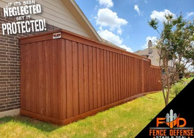 Professional staining for cedar fences