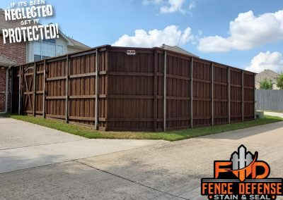 Stain Backyard Fence in Carrollton