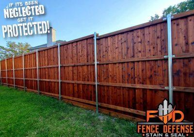 Stained Cedar Fence Allen TX