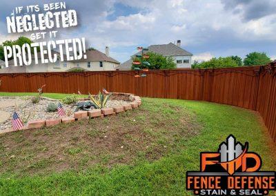 Staining A New Cedar Fence