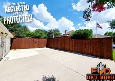 When to stain a new cedar fence